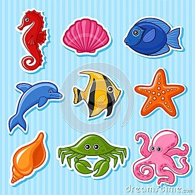 Free Sea Fauna Royalty Free Stock Photography - 13483537