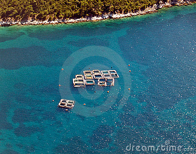 Sea fish farms, aerial