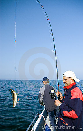 Free Sea Fishing. Royalty Free Stock Photos - 2494708