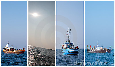 Sea fishing collection