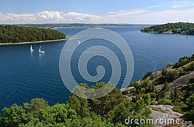 Sea fjord summer landscape