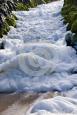 Free Sea Foam Royalty Free Stock Photo - 11433635