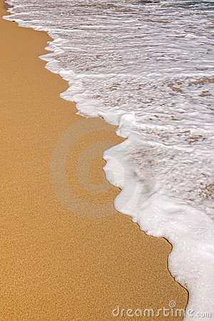Free Sea Foam On Sand Royalty Free Stock Photography - 22633727