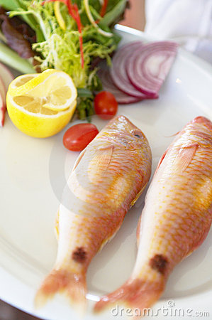 Free Sea Food Stock Photos - 3191133
