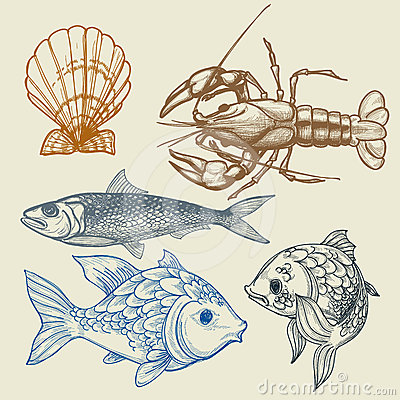 Free Sea Food Set Stock Photography - 24385492