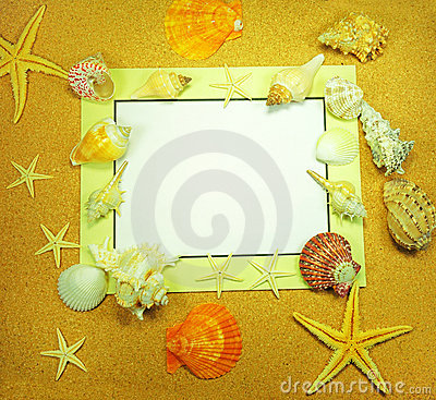 Sea frame with starfishes