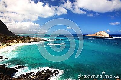 Sea in Hawaii