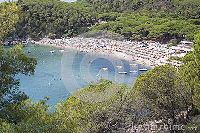 Sea island of Elba