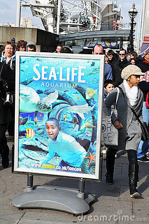 Sea Life Aquarium Editorial Stock Image