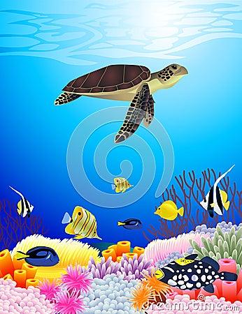Sea life background