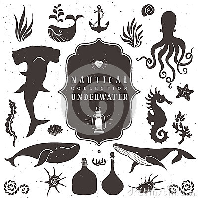 Free Sea Life, Marine Animals. Vintage Hand Drawn Elements Royalty Free Stock Images - 45428629