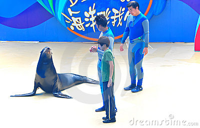 Sea lion and instructors Editorial Stock Image