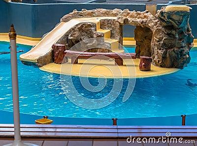 Sea Lions Enclosure
