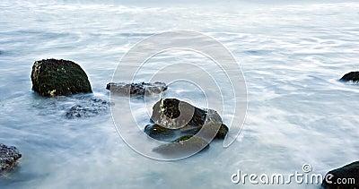 Sea Motion 5