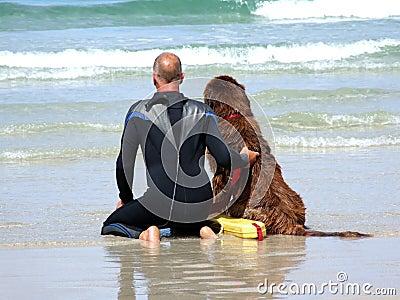 Sea Rescue Dog