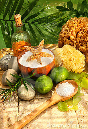 Free Sea Salt, Sponges, Limes And Spa Essentials Stock Image - 5205661