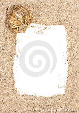 Sea shell with beach sand