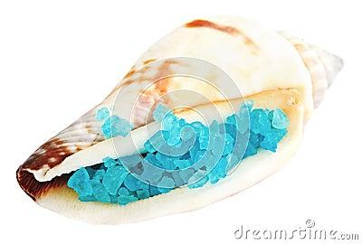 Sea shell with blue dead sea salt