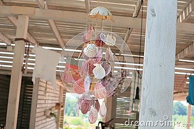 Sea shell decor
