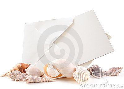 Sea shells and Blank Card