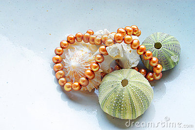 Sea shells and pearls