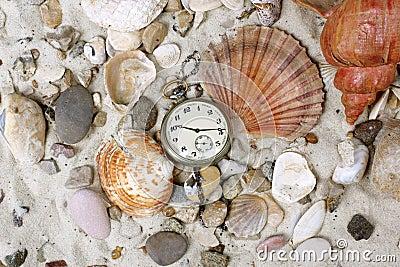 Sea Shells and vintage clock on sand