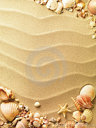 Free Sea Shells With Sand Stock Photos - 19121473