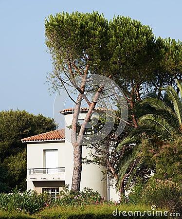 Sea-side villa in Provence