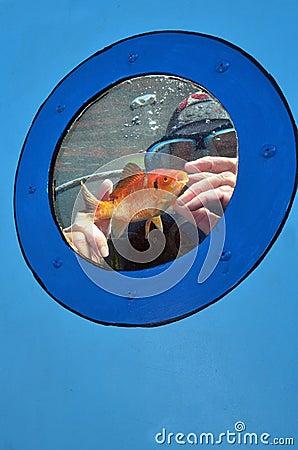 Sea Sport - Scuba Diving