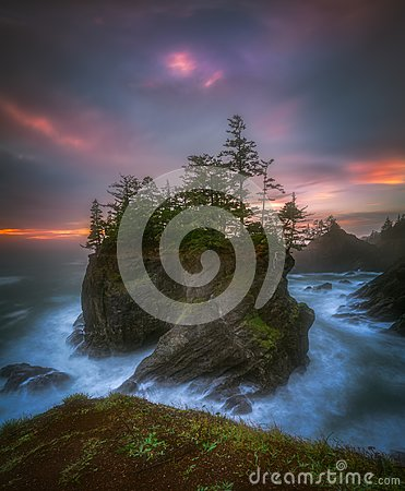 Free Sea Stack With Trees Of Oregon Coast Stock Photography - 102907012