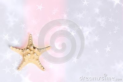 Sea star background