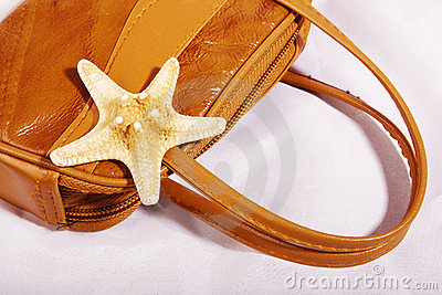 Sea star on a bag