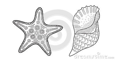Sea star and shell vector illustration for adult coloring for Sea star coloring page
