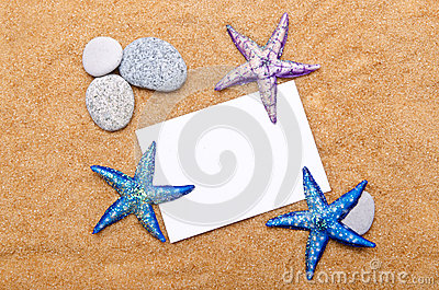 Sea stars  on  white