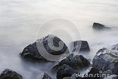 Sea stones.