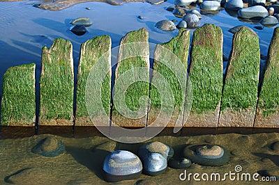 Sea stones and sand