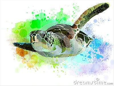 Sea turtle. Stock Photo