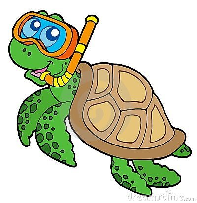 Free Sea Turtle Snorkel Diver Stock Photos - 9364523