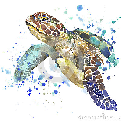 Sea turtle T-shirt graphics. sea turtle illustration with splash watercolor textured background. unusual illustration watercolor s Cartoon Illustration