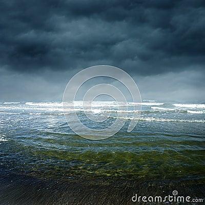 Free Sea V Royalty Free Stock Photography - 13145127