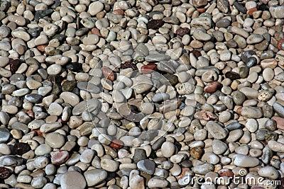 Sea Wet Stones