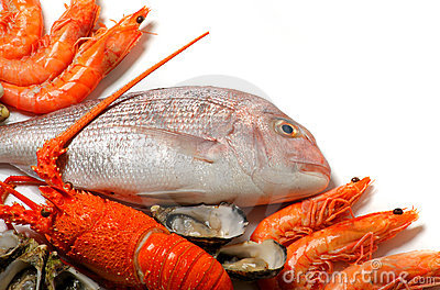 Seafood with copy space
