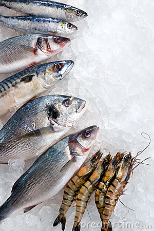 Free Seafood On Ice Stock Photography - 24357122