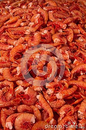 Seafood - shrimp