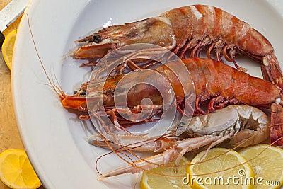Seafood - Tiger Prawns and Langoustine