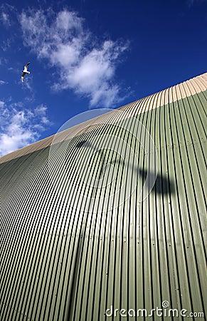 Seagul flying over hangar