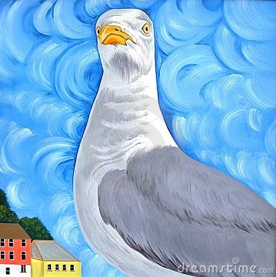 Seagull with Attitude