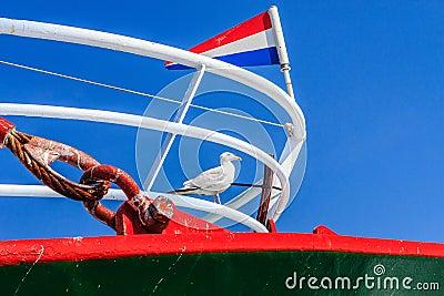 Seagull on a fishingboat.