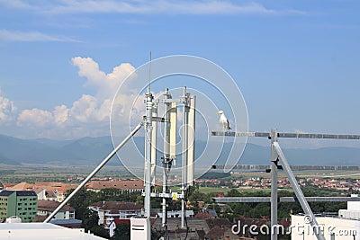 Seagull standing near antennas