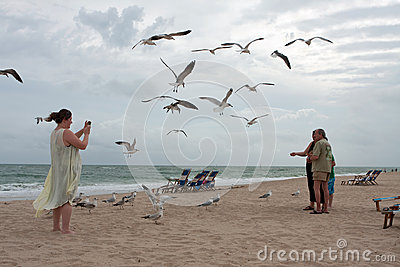 Seagulls Swarm Around Family Taking Photo On Beach Editorial Photography